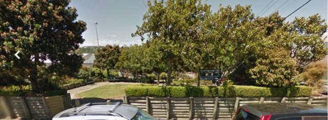Wanaka Street park